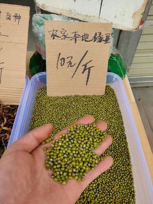 四川省泸州市古蔺县东北绿豆 散装 1等品