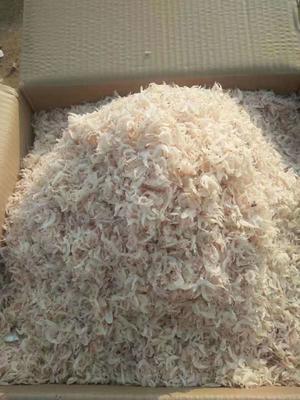 这是一张关于虾皮 的产品图片