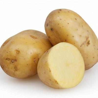 这是一张关于马铃薯1土豆 3两以上 的产品图片