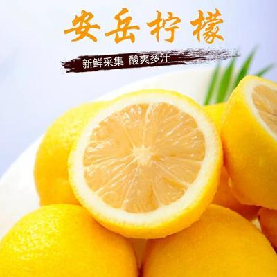 四川省资阳市安岳县安岳柠檬  一级大果5斤14.8元一件代发