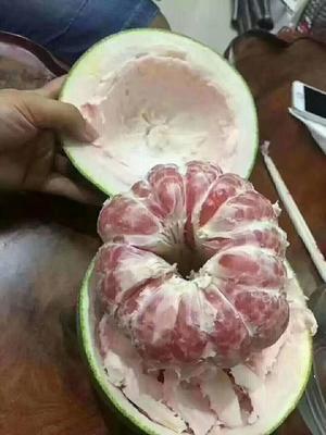 广西壮族自治区崇左市凭祥市越南红心青柚 2斤以上