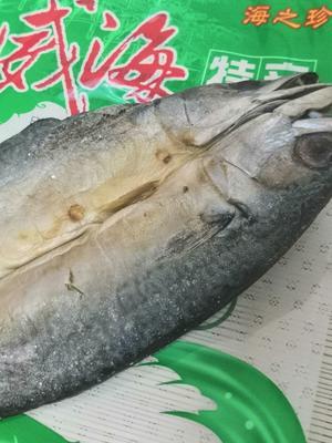 山东省威海市环翠区咸鱼  鲅鱼干