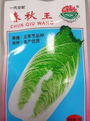 这是一张关于大白菜种子 杂交种 ≥85% 的产品图片