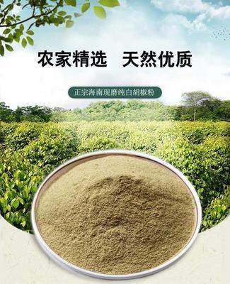 海南省海口市美兰区黑胡椒粉