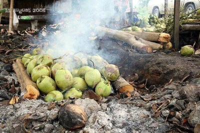 广东省广州市荔湾区泰国香水椰 2.5 - 3斤 泰国烧烤椰子