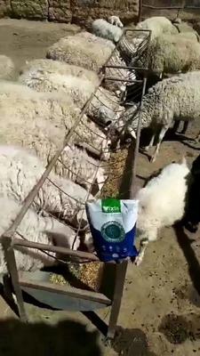 这是一张关于牛羊饲料  拉骨架,促生长的产品图片