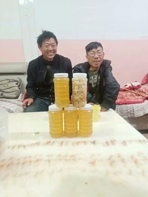 云南省曲靖市麒麟区土蜂蜜 塑料瓶装 2年以上 98%