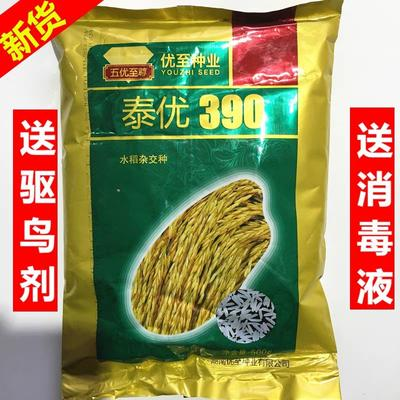 江西省南昌市南昌县水稻种子 杂交种 ≥90%