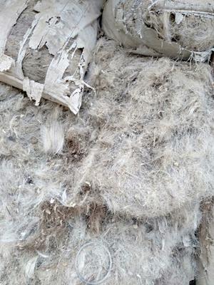 新疆维吾尔自治区乌鲁木齐市新市区猪毛