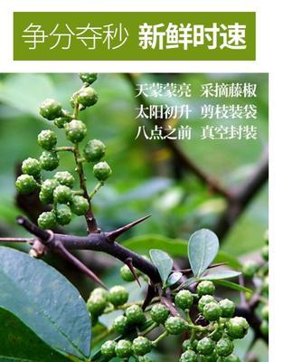 重庆江津区九叶青花椒  二级 鲜花椒