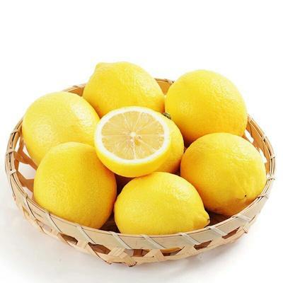 重庆潼南县安岳柠檬 5 - 6两