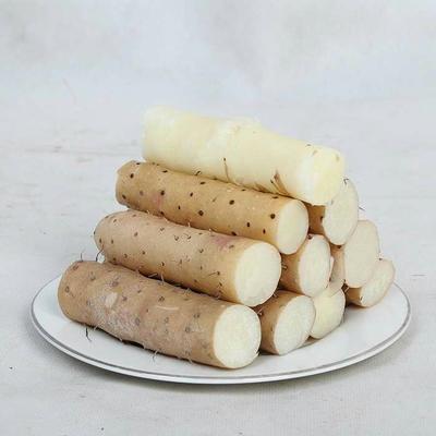 这是一张关于小白嘴白山药 通货 的产品图片