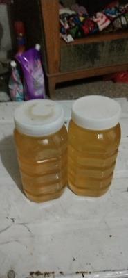 河南省商丘市民权县洋槐蜂蜜 塑料瓶装 2年 100%
