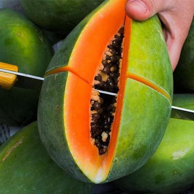 海南省海口市秀英区红心木瓜 2.5 - 3斤