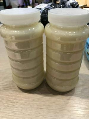 辽宁省葫芦岛市建昌县土蜂蜜 塑料瓶装 1年 100%