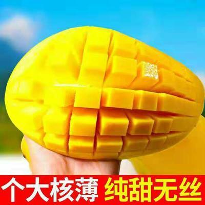 广西壮族自治区南宁市兴宁区金煌芒 6两以上