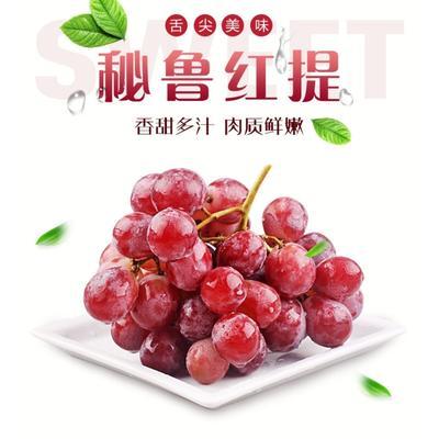 广东省广州市白云区秘鲁进口红提 1-1.5斤 5%以下 1次果
