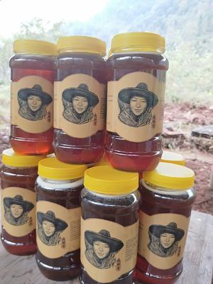 这是一张关于土蜂蜜  塑料瓶装 2年 100% 荆条,五倍子,土蜂蜜的产品图片