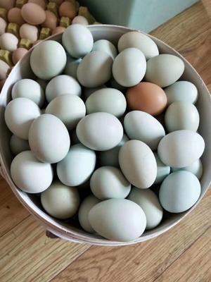 这是一张关于绿壳鸡蛋 食用 箱装 的产品图片