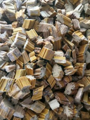 这是一张关于流苏石斛  药用石斛的产品图片