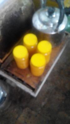 新疆维吾尔自治区伊犁哈萨克自治州特克斯县百花蜜 塑料瓶装 2年以上 98%