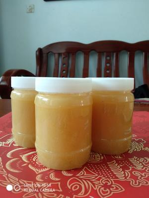 山东省枣庄市市中区百花蜜 塑料瓶装 2年以上 100%