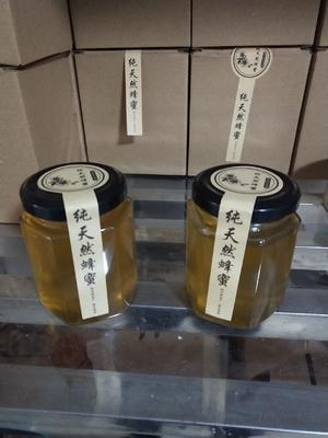 这是一张关于土蜂蜜 玻璃瓶装 2年以上 98% 的产品图片
