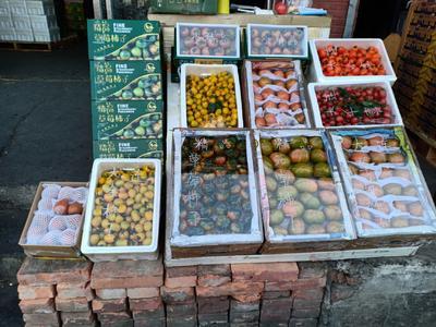 北京丰台区草莓柿子 2 - 3两以上