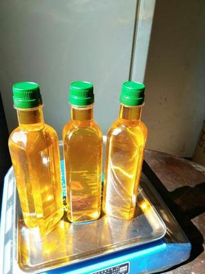 这是一张关于现榨山茶油 的产品图片