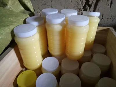 新疆维吾尔自治区乌鲁木齐市头屯河区百花蜜 玻璃瓶装 2年以上 95%以上