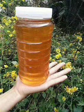 江西省景德镇市乐平市土蜂蜜 塑料瓶装 2年 100%
