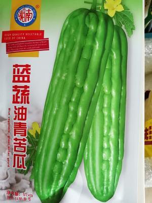 湖北省黄冈市英山县绿苦瓜种子 袋装