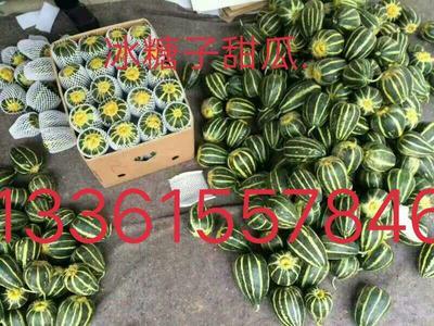 山东省潍坊市寒亭区冰糖子甜瓜 0.5斤以上