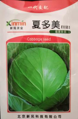 这是一张关于绿甘蓝种子 杂交种 ≥90% 的产品图片