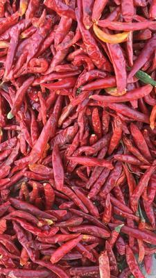 这是一张关于朝天椒干辣椒 的产品图片