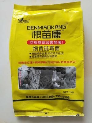 这是一张关于细黄链霉菌 粉剂 袋装 微毒 的产品图片