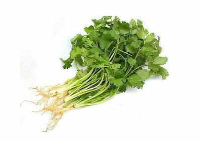 这是一张关于大叶香菜 25~30cm 的产品图片