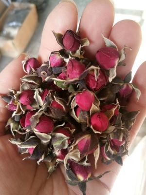 河北省保定市安国市金边玫瑰茶  一级 散装 祛斑 排毒