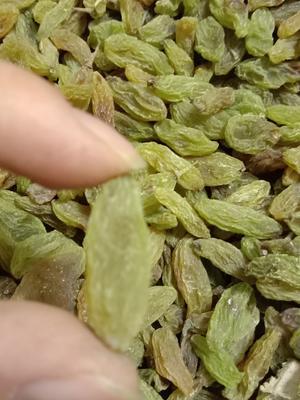 山东省临沂市兰山区绿宝石葡萄干 优等