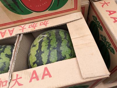 江苏省无锡市惠山区8424西瓜 4斤打底 9成熟 2茬以上 无籽