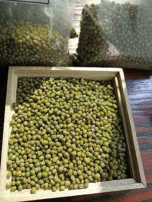 云南省德宏傣族景颇族自治州瑞丽市进口绿豆 袋装 2等品