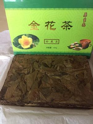 广西壮族自治区梧州市长洲区金花茶 一级 礼盒装