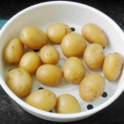 广西壮族自治区南宁市兴宁区荷兰806马铃薯 1~2两