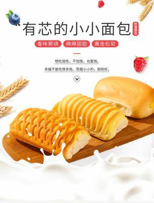广东省潮州市湘桥区面包 3-6个月