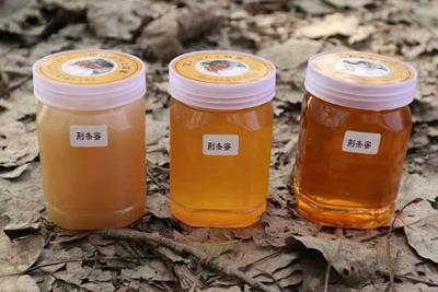 这是一张关于荆条蜜 塑料瓶装 2年 95%以上 的产品图片