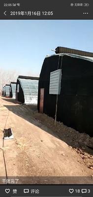 北京通州区大棚钢管