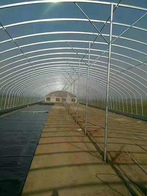 河北省石家庄市井陉县大棚钢管  养殖大棚,种植大棚,大棚配件