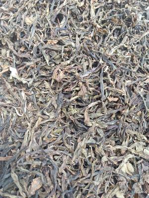 云南省西双版纳傣族自治州勐海县普洱生茶  散装 三级 普洱茶    叶片茶