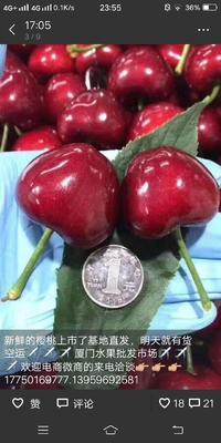 这是一张关于美早樱桃 28-30mm 8-12g 的产品图片