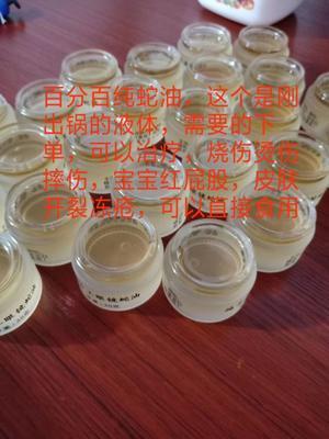这是一张关于油桂 的产品图片